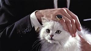 ブロフェルドの猫